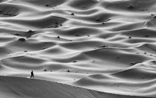 wandering_blog_image